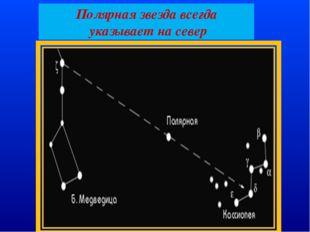 Полярная звезда всегда указывает на север