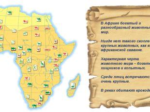 В Африке богатый и разнообразный животный мир. Нигде нет такого скопления кру