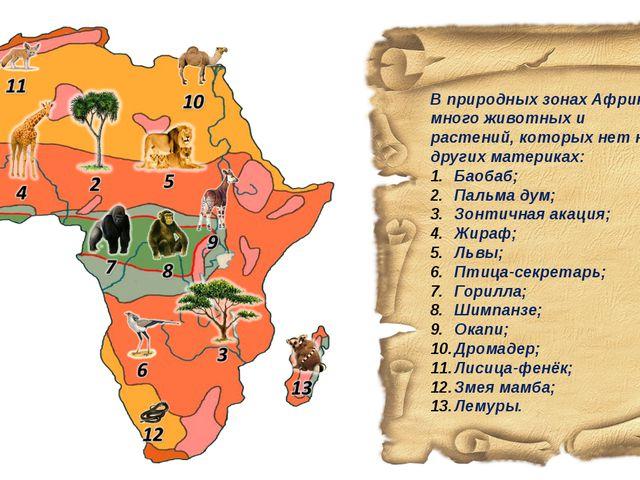 В природных зонах Африки много животных и растений, которых нет на других мат...
