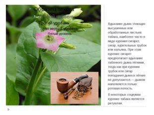 Табакокуре́ние Вдыхание дыма тлеющих высушенных или обработанных листьев таба