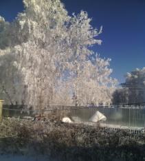 F:\ПРОЕКТ\зимняя красота\IMG_20141116_121624.jpg