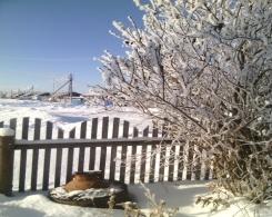 F:\ПРОЕКТ\зимняя красота\IMG_20141116_121024.jpg