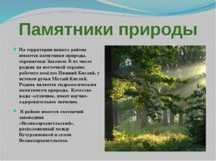Памятники природы На территории нашего района имеются памятники природы, охра