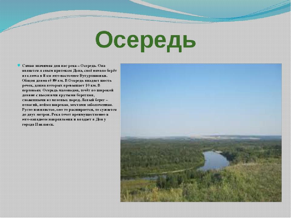 Осередь Самая значимая для нас река – Осередь. Она является л евым притоком Д...