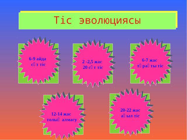 Тіс эволюциясы 6-9 айда сүт тіс 2 -2,5 жас 20 сүт тіс 6-7 жас тұрақты тіс 12-...