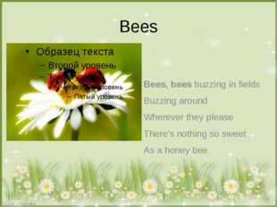 Bees Bees, bees buzzing in fields Buzzing around Wherever they please There's