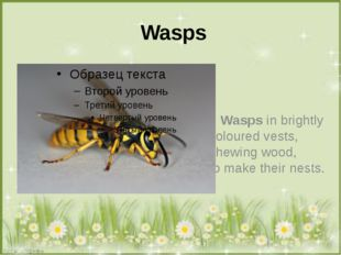 Wasps Wasps in brightly Coloured vests, Chewing wood, To make their nests.