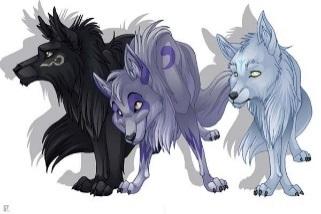 C:\Users\папа\Desktop\пословицы и поговорки\пословицы картинки\1235373944_three_wolves_by_lobbyreal.jpg