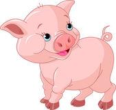 C:\Users\папа\Desktop\пословицы и поговорки\пословицы картинки\depositphotos_6491629-Little-Baby-Pig.jpg