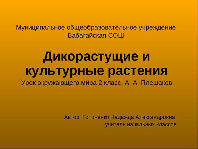 Муниципальное общеобразовательное учреждение Бабагайская СОШ Дикорастущие и к...