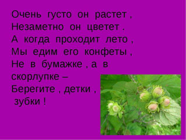 Очень густо он растет , Незаметно он цветет . А когда проходит лето , Мы едим...