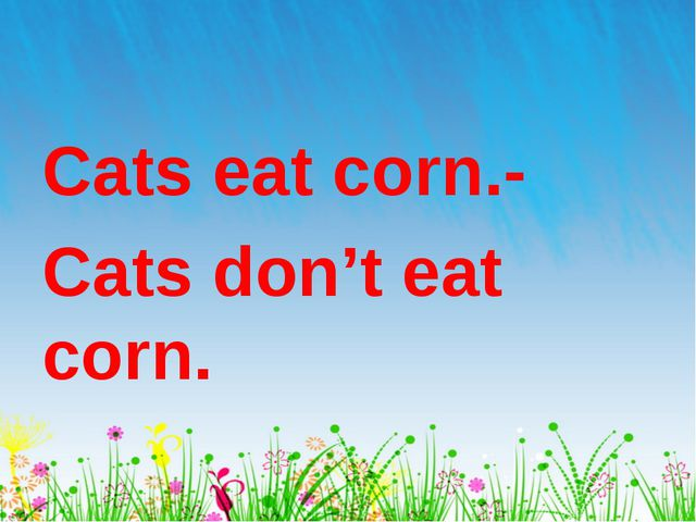 Cats eat corn.- Cats don't eat corn.
