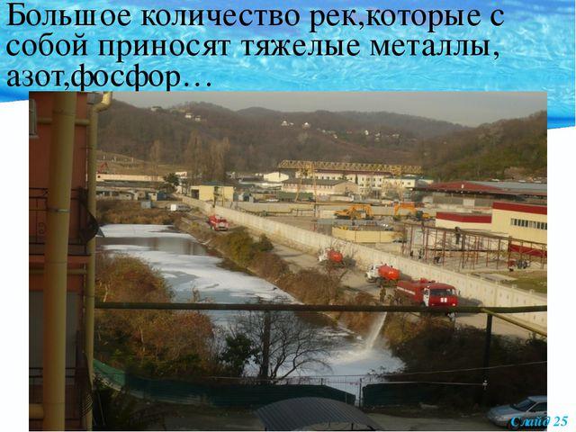 Большое количество рек,которые с собой приносят тяжелые металлы, азот,фосфор...