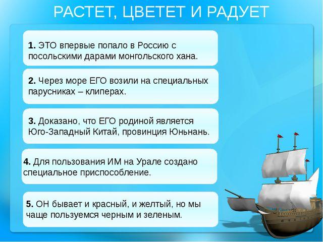 РАСТЕТ, ЦВЕТЕТ И РАДУЕТ 1. ЭТО впервые попало в Россию с посольскими дарами м...
