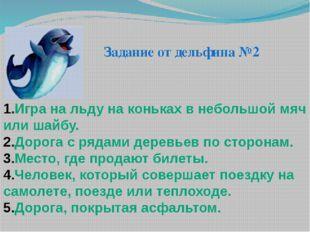 Задание от дельфина №2 Игра на льду на коньках в небольшой мяч или шайбу. Дор