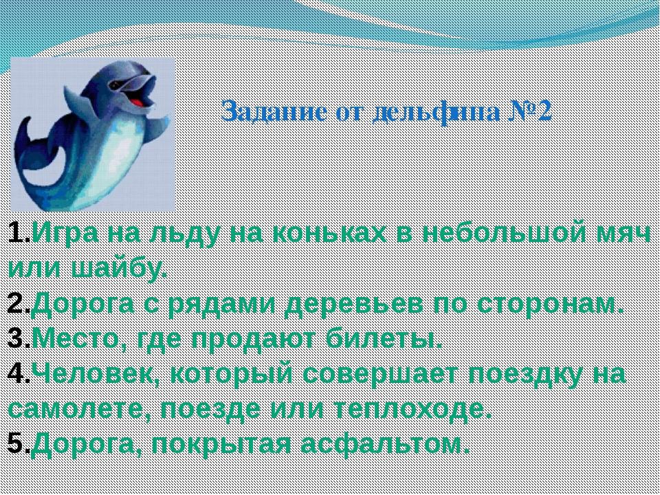 Задание от дельфина №2 Игра на льду на коньках в небольшой мяч или шайбу. Дор...