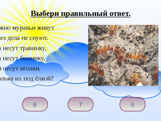 Дружно муравьи живут И без дела не снуют. Два несут травинку, Два несут б...