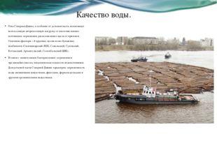 Качество воды. Река Северная Двина, а особенно её устьевая часть, испытывает