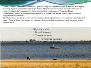 Далее Северная Двина несет свои воды строго на север и, в скором времени, при