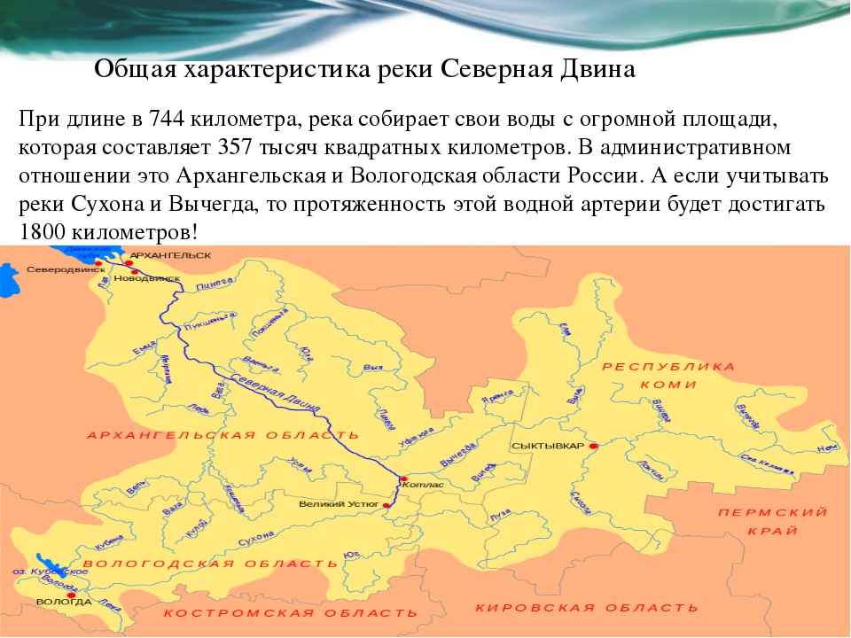 Общая характеристика реки Северная Двина При длине в 744 километра, река соби...