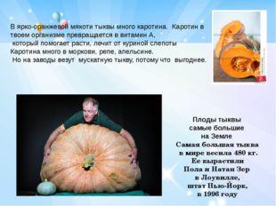 В ярко-оранжевой мякоти тыквы много каротина. Каротин в твоем организме превр