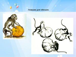 Ловушка для обезьян.