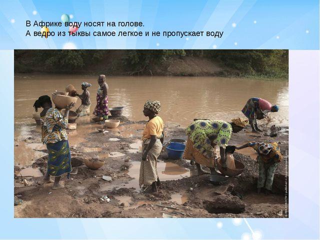 В Африке воду носят на голове. А ведро из тыквы самое легкое и не пропускает...
