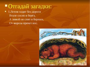 Отгадай загадки: 1.Летом ходит без дороги Возле сосен и берёз, А зимой он спи