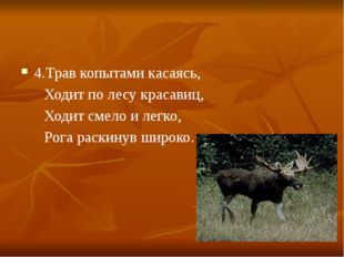4.Трав копытами касаясь, Ходит по лесу красавиц, Ходит смело и легко, Рога ра