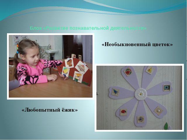Блок «Развитие познавательной деятельности» «Любопытный ёжик» «Необыкновенный...