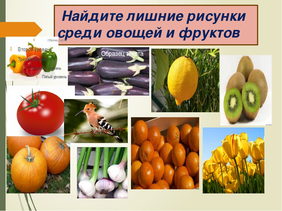 Найдите лишние рисунки среди овощей и фруктов овощи фрукты