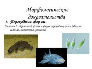 4. Атавистические органы Атавизмы– это органы (или структуры, показывающие «в