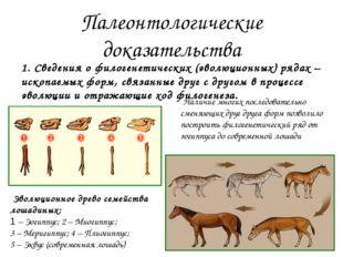 Сегодня 135 млн.лет назад Различия или сходства состава флоры и фауны могут б