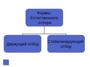 Понятие «вид» По К. Линнею: Вид - совокупность сходных по строению особей, да