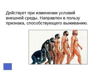 Понятие «вид» Современное представление: Вид - это жизненные формы, которые с