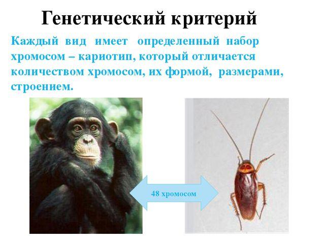Экологический критерий Характеризуется определенными формами взаимоотношений...
