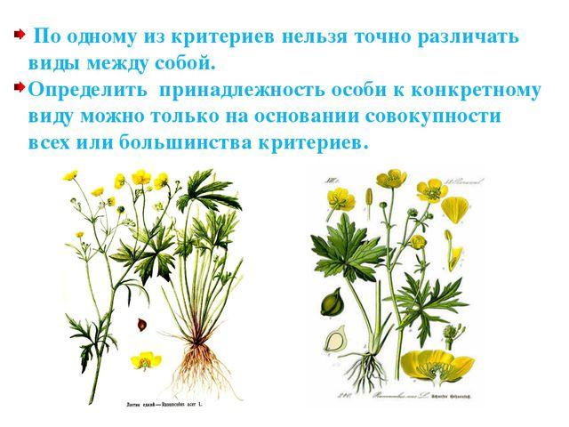 Направления эволюции Биологический прогресс. - Возрастание приспособленности...