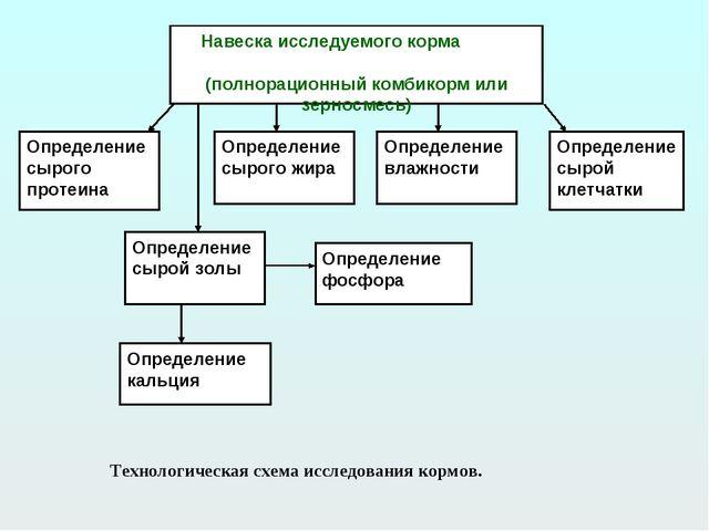 Технологическая схема исследования кормов.
