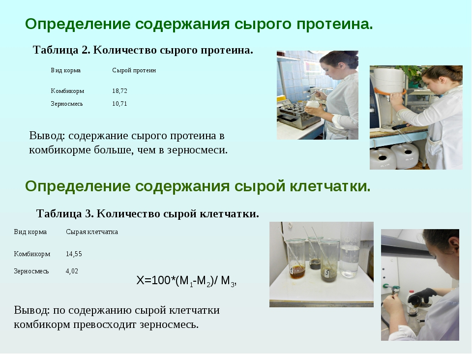 Определение содержания сырого протеина. Таблица 2. Количество сырого протеина...