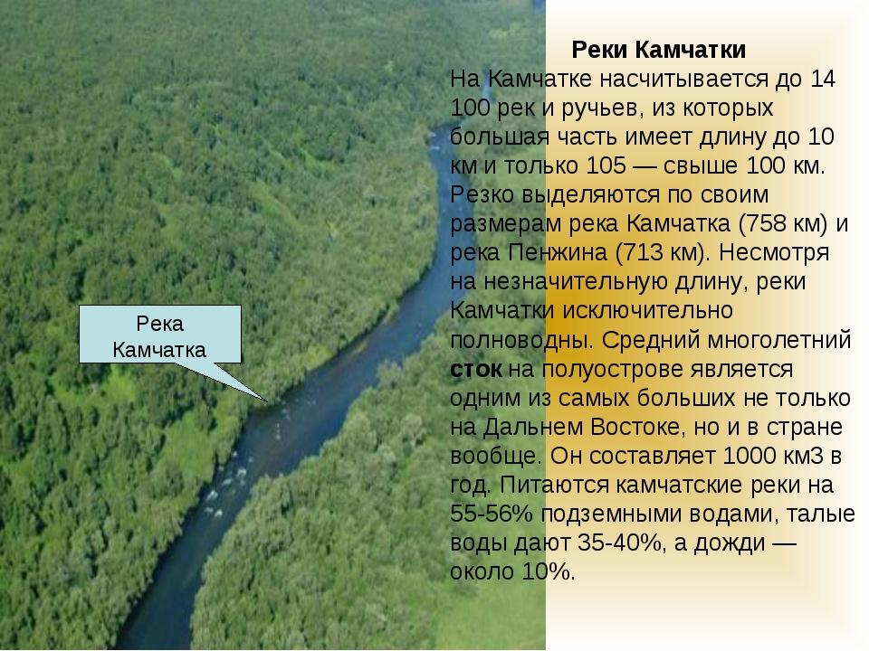 Реки Камчатки На Камчатке насчитывается до 14 100 рек и ручьев, из которых б...