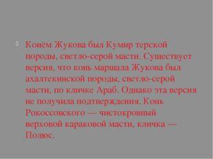 Конём Жукова былКумиртерской породы, светло-серой масти. Существует версия
