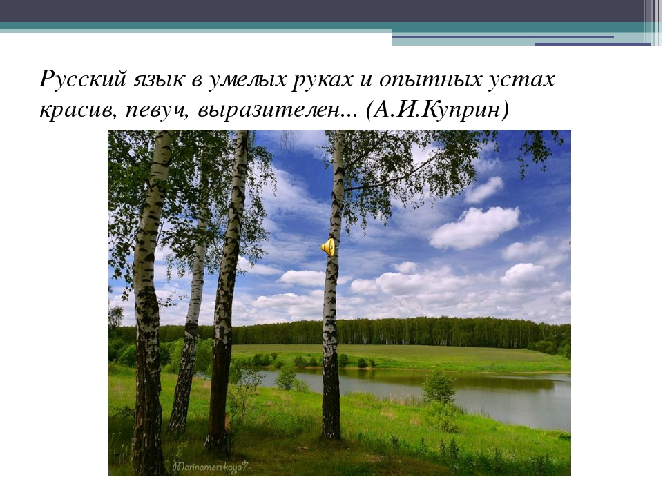 Русский язык в умелых руках и опытных устах красив, певуч, выразителен... (А....