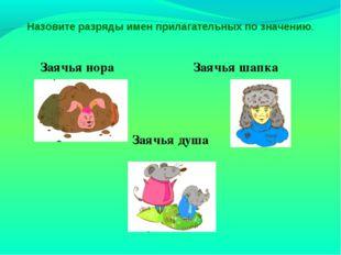 Заячья нора Заячья шапка Заячья душа Назовите разряды имен прилагательных по
