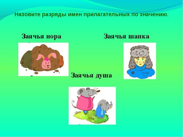 Заячья нора Заячья шапка Заячья душа Назовите разряды имен прилагательных по...