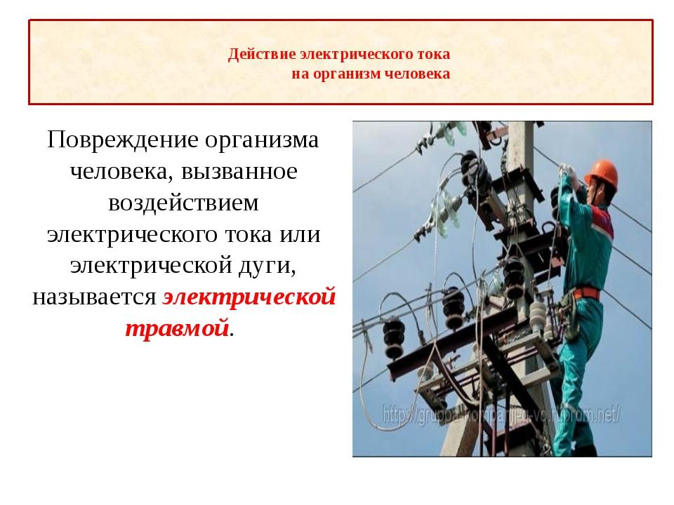 Действие электрического тока на организм человека Повреждение организма ч...