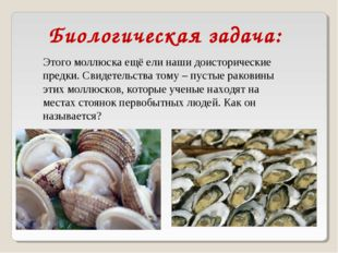 Биологическая задача: Этого моллюска ещё ели наши доисторические предки. Свид