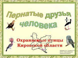 Охраняемые птицы Кировской области Мёшина О.А, Глызина Н.Н.. МКОУ СОШ п.Вахру