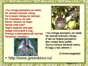http://www.greenkirov.ru/ «Ты гнезда разорять не смей, Не трогай птичьих гнёз
