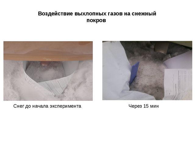 Воздействие выхлопных газов на снежный покров Через 15 мин Снег до начала экс...
