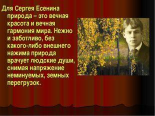 Для Сергея Есенина природа – это вечная красота и вечная гармония мира. Нежно